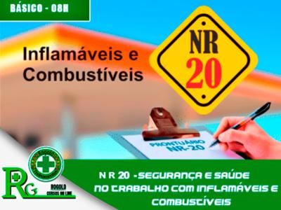 NR 20 – Segurança e Saúde no Trabalho com Inflamáveis e Combustíveis – Básico  (semipresencial)
